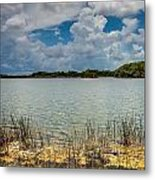Everglades Lake 6930 Metal Print by Rudy Umans