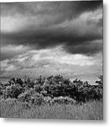 Everglades Storm Bw Metal Print