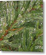 Evergreen Covered In Ice Metal Print