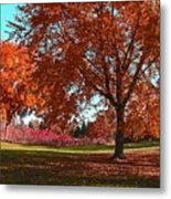Every Year I Miss Autumn After It Is Over Metal Print