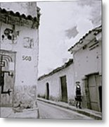 The Life Of Cuzco Metal Print