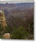 Evolution Of Nature At The Grand Canyon Metal Print