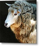 Ewe Are So Beautiful Metal Print