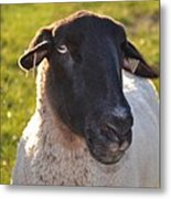 Ewe Bet I'm Cute Metal Print