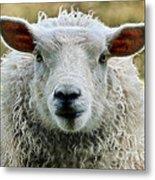 Ewe's Just Fluffy Metal Print