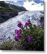 Exit Glacier Metal Print