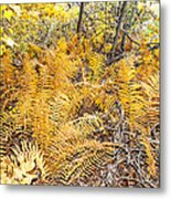 Exotic Plants Of The Dunes Metal Print