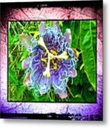 Exotic Strange Flower Metal Print