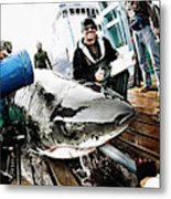 Expedition Great White Crew Conducts Metal Print