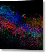 Expressions Of Color Metal Print