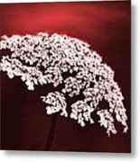 Exquisitely Made Metal Print