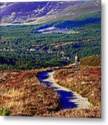 Extasy In Cairngorms National Park Scotland Metal Print