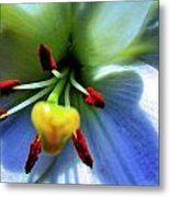Extrem Lily Heart Metal Print