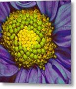 Extreme Flower Metal Print