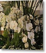 Exuberant Orchid Display Metal Print