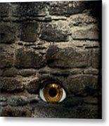 Eye In Brick Wall Metal Print