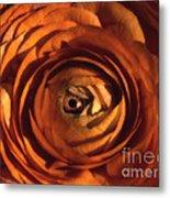 Eye Of The Bloom Metal Print