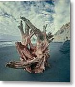 Eye Of The Driftwood Metal Print