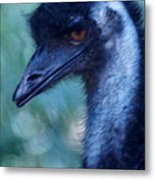 Eye Of The Emu Metal Print by DerekTXFactor Creative