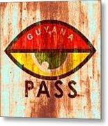 Eye Pass Metal Print