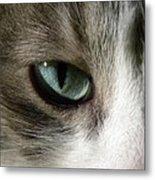 Eyes 3 Metal Print