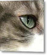Eyes 4 Metal Print