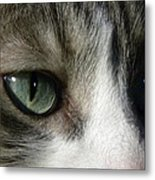 Eyes 5 Metal Print