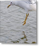 Eyes On The Prize 2 Metal Print