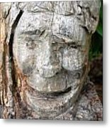 Face In A Tree Metal Print