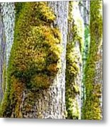 Face In The Moss Metal Print