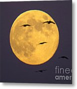 Face On The Moon Metal Print