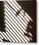 Face Shadow Metal Print