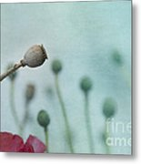 faded summer III Metal Print