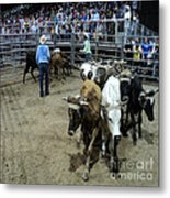 Fair Rodeo Metal Print