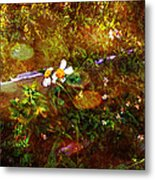 Fairy Land Metal Print