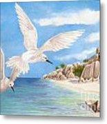 Fairy Terns Ladigue Metal Print