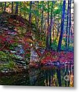 Fairyland Forest Metal Print