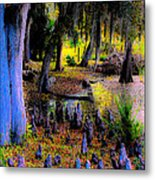 Fairyland Of Gnomes Metal Print