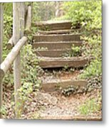 Fairytale Path Metal Print
