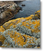Falkland Islands Metal Print