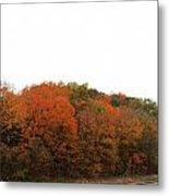 Fall 32 Metal Print