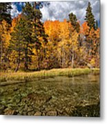 Fall Along Bishop Creek Metal Print by Cat Connor