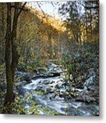 Fall Along Citico Creek Metal Print