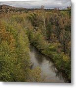 Fall Along The Creek Metal Print