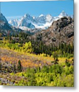 Fall Aspen Below The Sierra Crest Metal Print