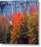 Fall At Steele Creek Metal Print