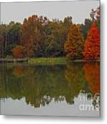 Fall At Tom Brown Park Metal Print