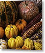 Fall Autumn Abundance Metal Print