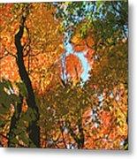 Fall Beauty Metal Print