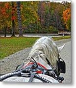 Fall Carriage Ride Metal Print